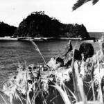 奄美探訪#15 ©まちいろ