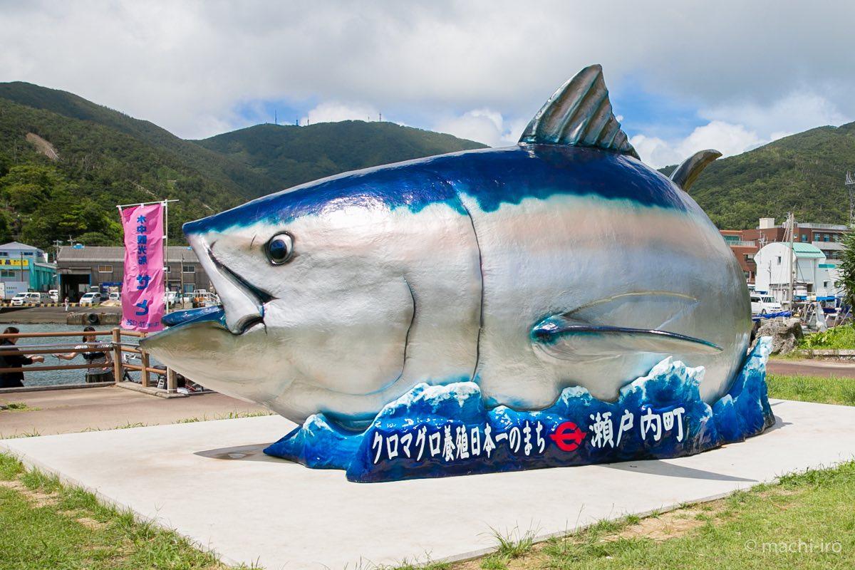 tuna201508-01
