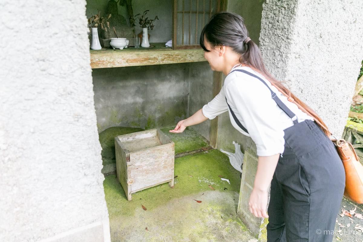 奄美 菅原神社 参拝 お賽銭の写真