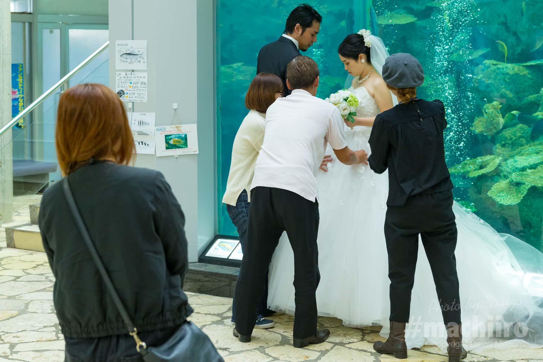 奄美海洋展示館に到着しました。