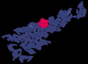 奄美大島地図ロゴ