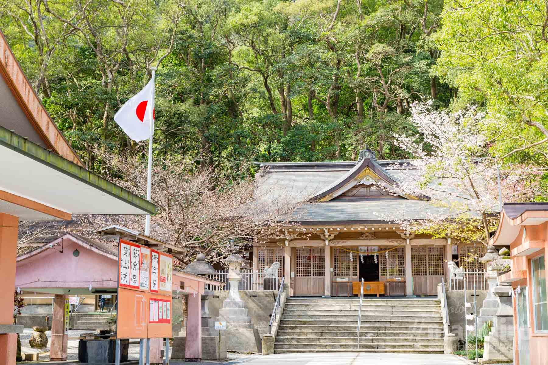 奄美大島 高千穗神社写真