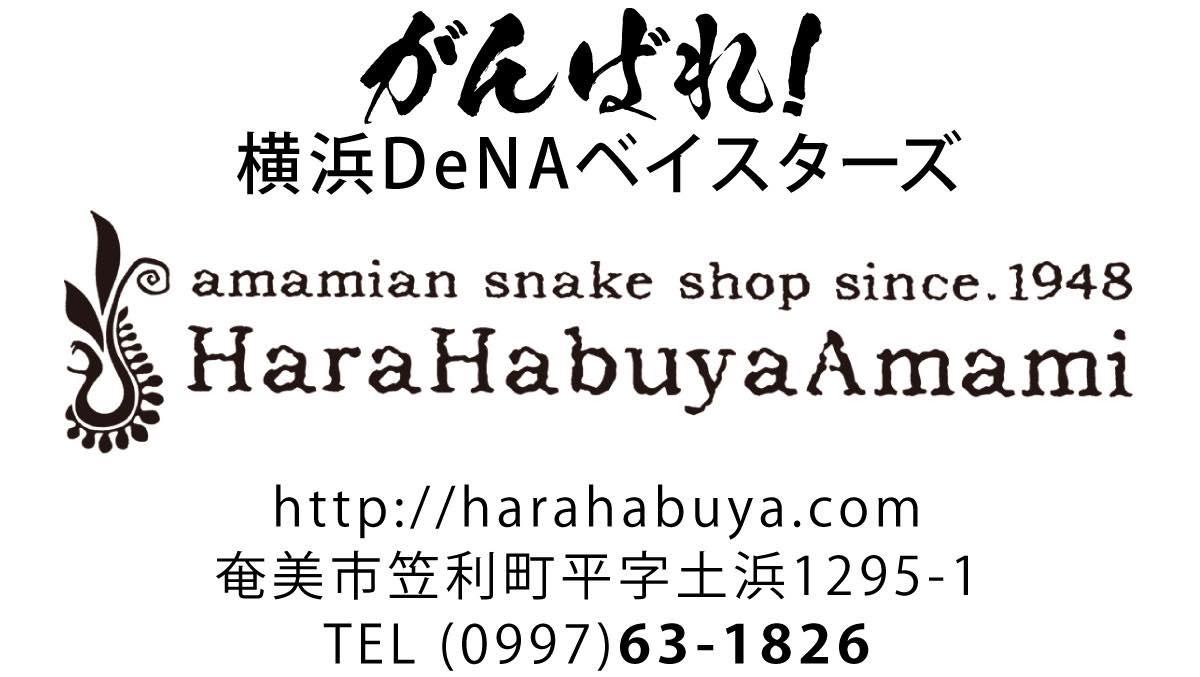 We Love 横浜DeNAベイスターズ #29