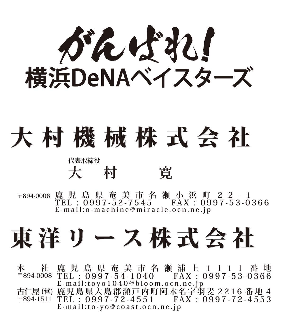 We Love 横浜DeNAベイスターズ #33