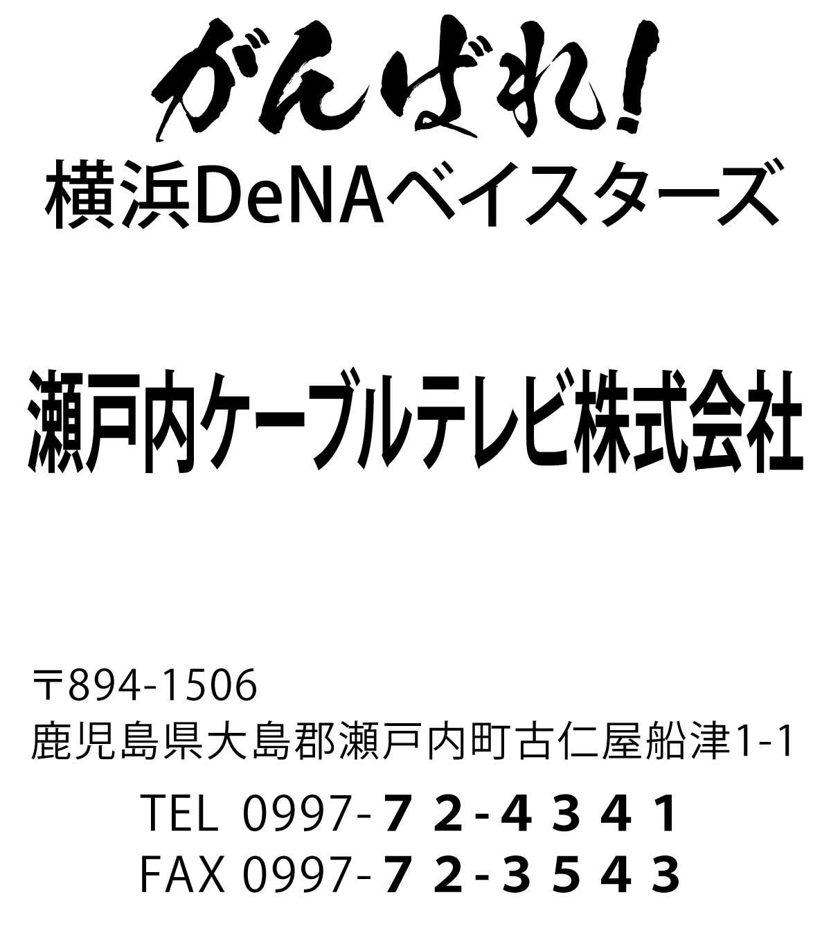 We Love 横浜DeNAベイスターズ #20