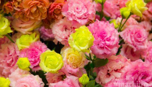 生花を優しくセンス良くアレンジしてくれる花屋の花舎さん。