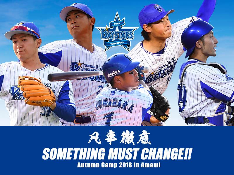横浜DeNAベイスターズ秋季奄美キャンプ2018バナー