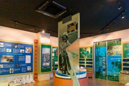 宇検村生涯学習センター 歴史民俗資料室