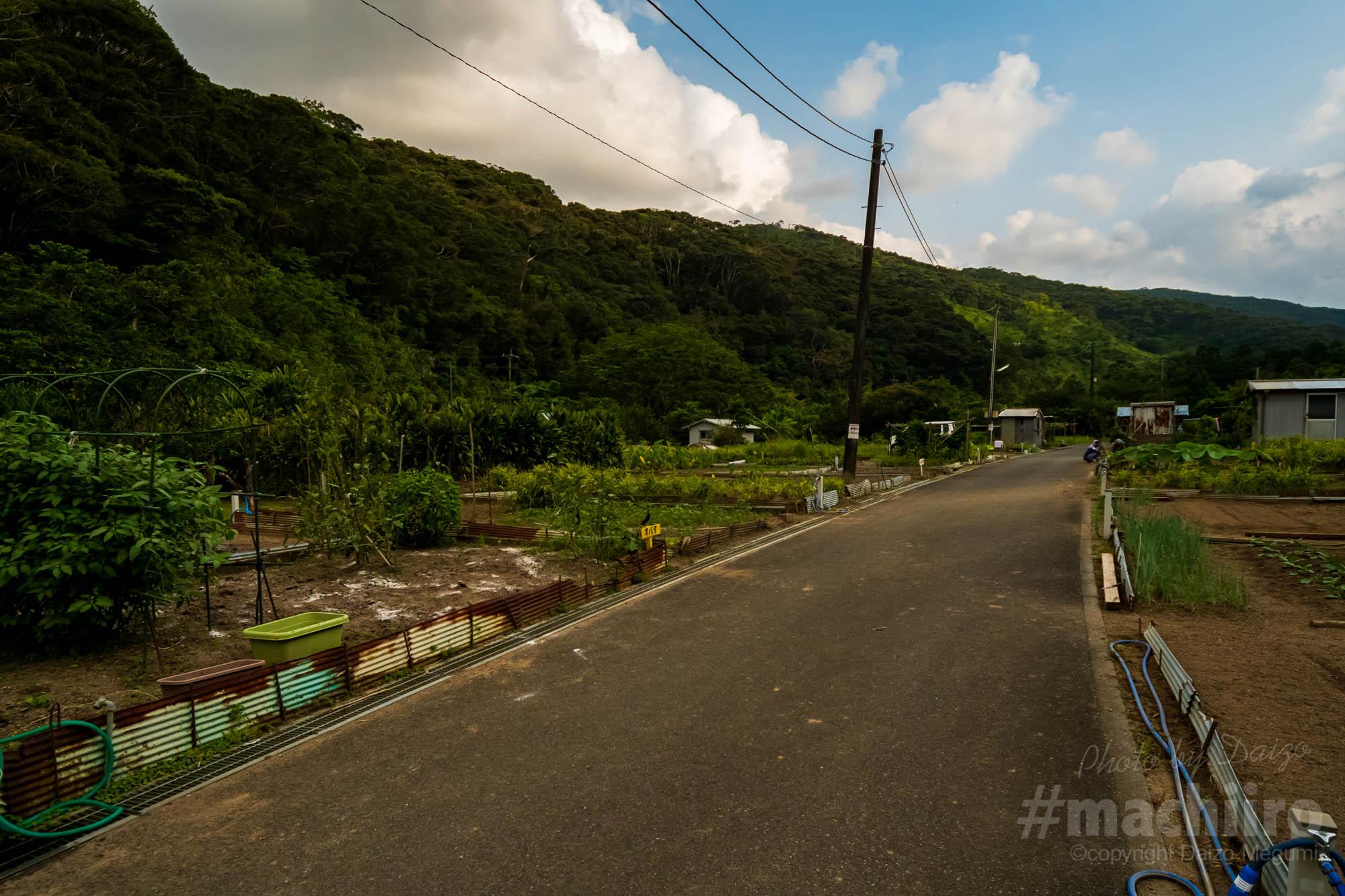奄美和光園 ハンセン病 Machiiro奄美探訪 記事写真 122