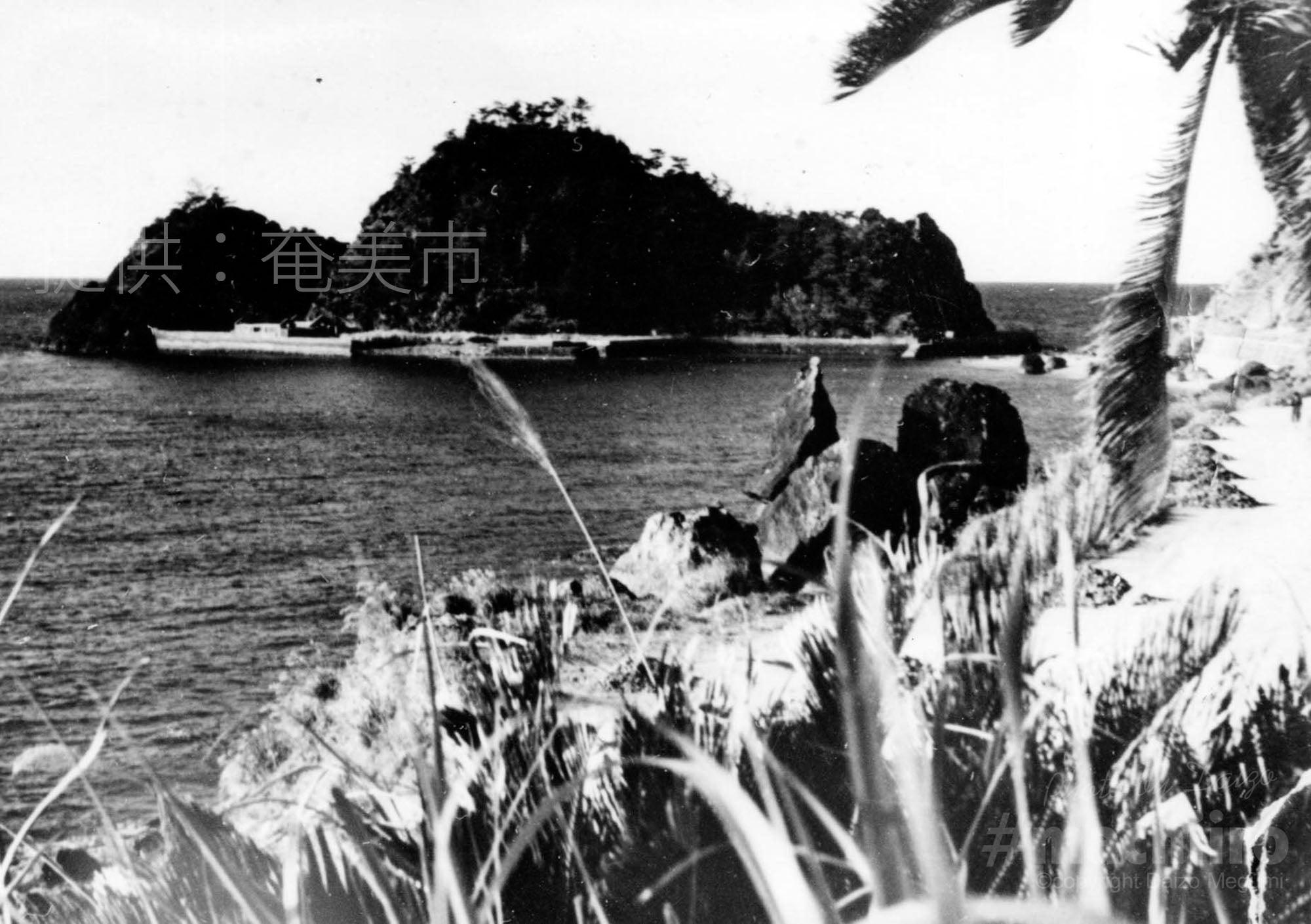 奄美市提供 山羊島 Machiiro 記事写真 1
