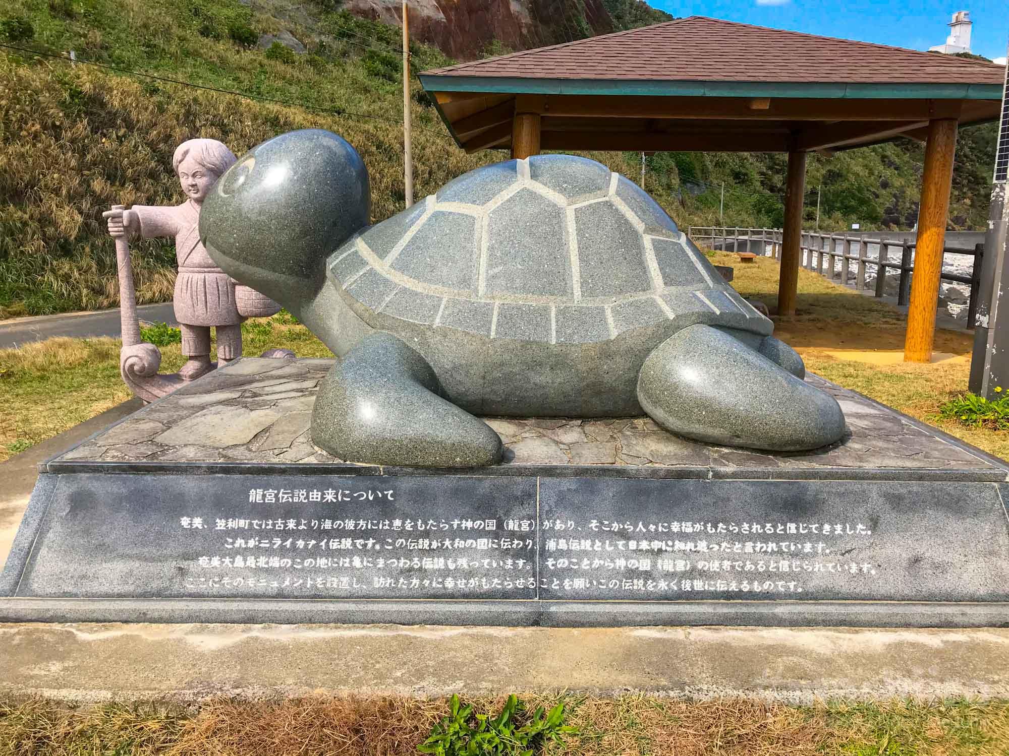 夢をかなえるカメさん Machiiro 記事写真 3