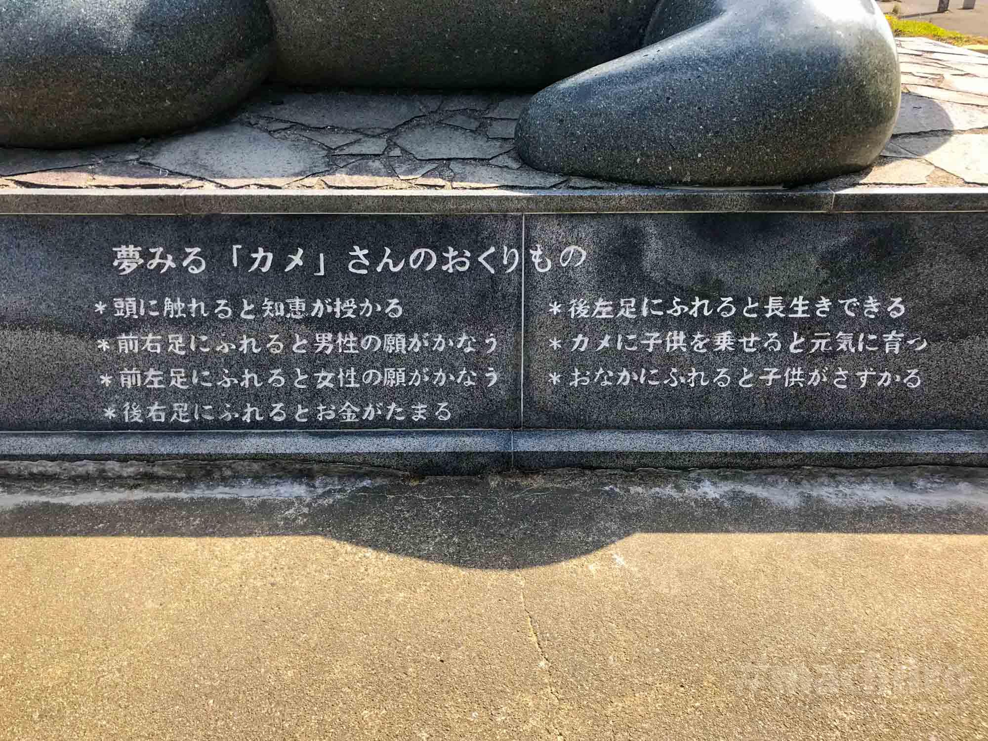 夢をかなえるカメさん Machiiro 記事写真 4