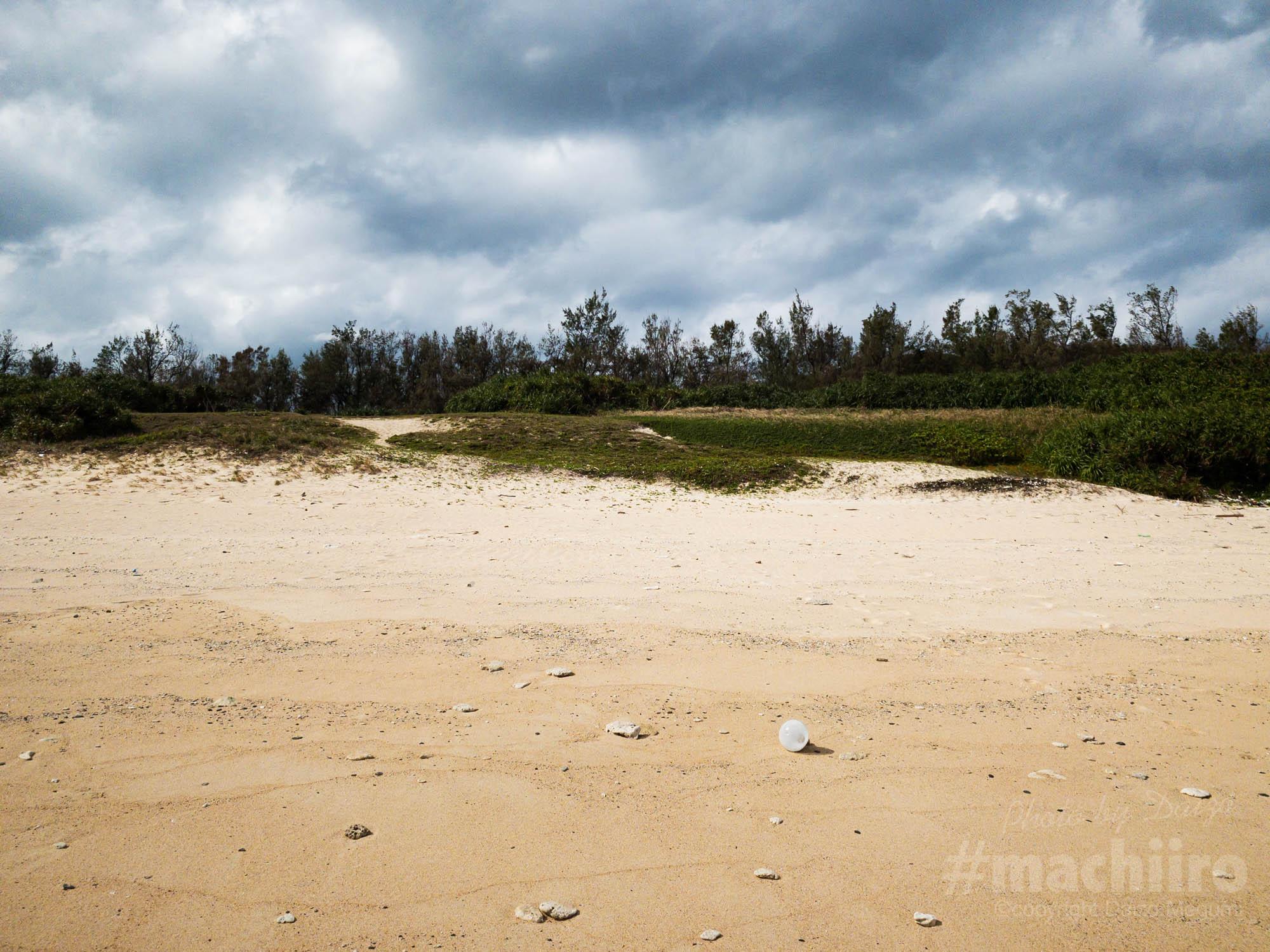 用海岸調査 Machiiro 記事写真 2