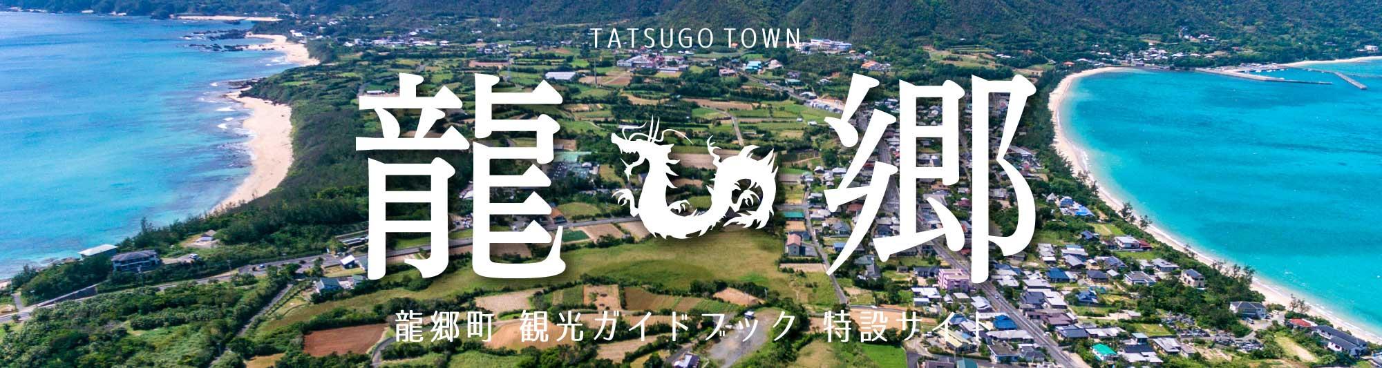 龍郷町観光ガイドブック特設サイト バナー
