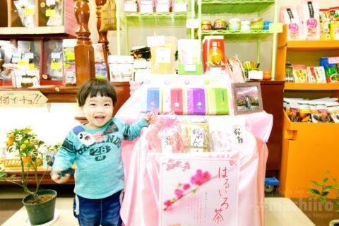 お茶の堀口園 Machiiro 記事写真 1