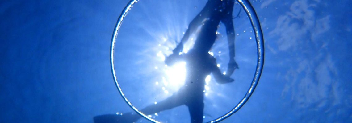 4 ネバーランドダイビング写真