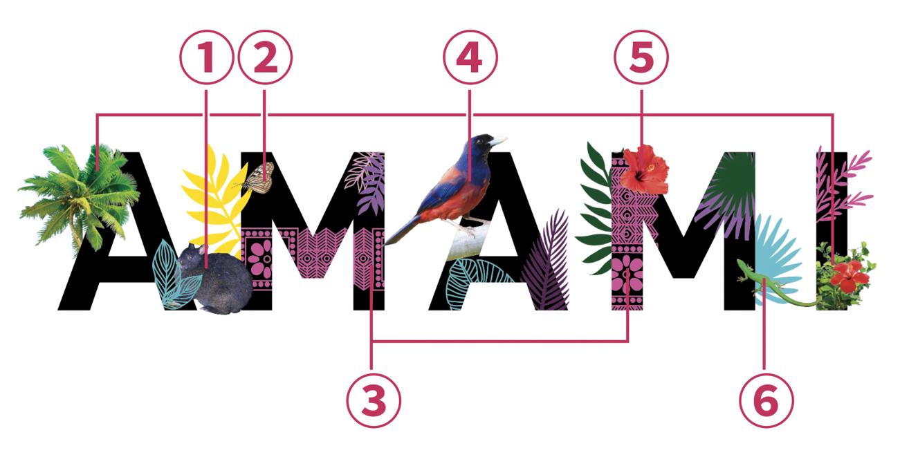 amamiの文字 リリース添付している画像