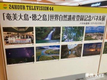 24時間テレビ 44 「奄美大島・徳之島」世界自然遺産登録記念パネル展の模様